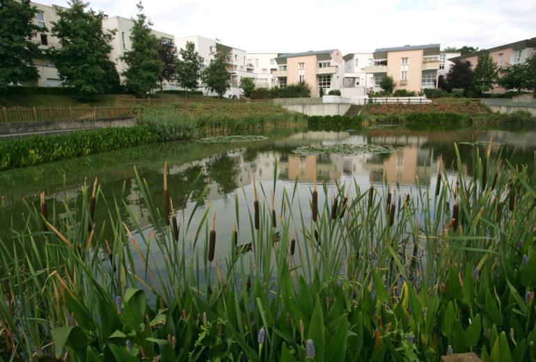 Bassin des Houssières