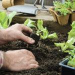 jardinage cours